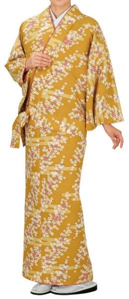 画像1: お取り寄せ商品 二部式着物【袷仕立】 霞・小花 (1)